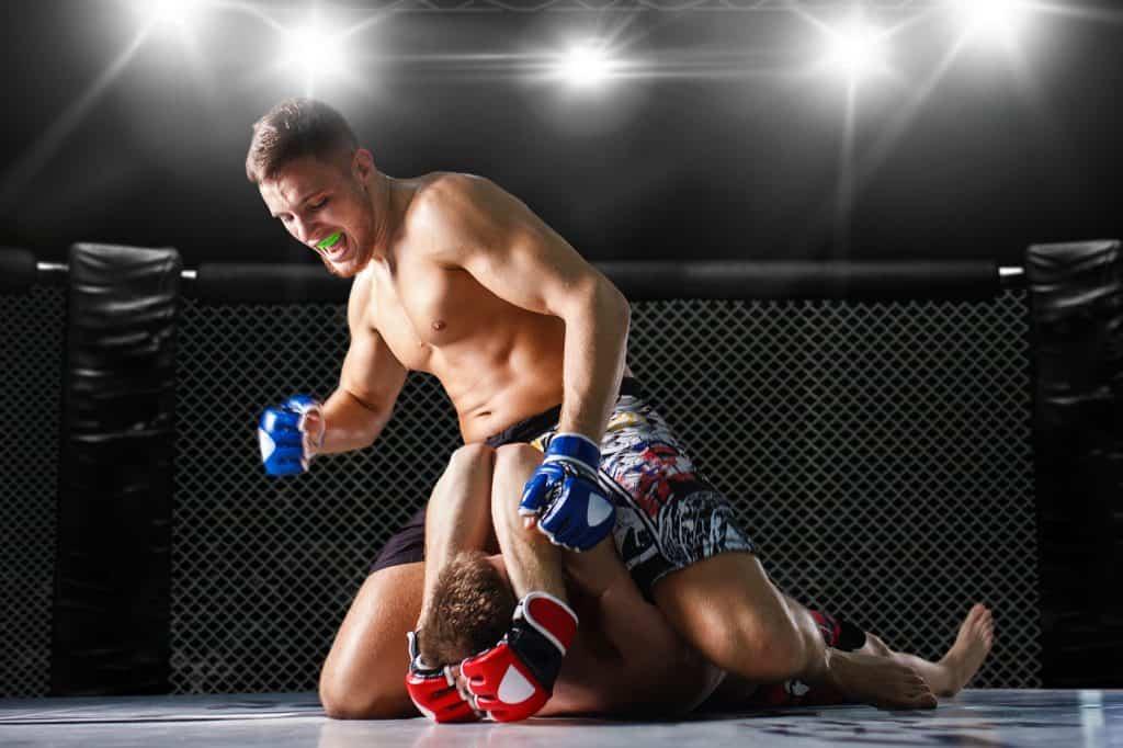 Le combat ultime et les arts martiaux mixtes